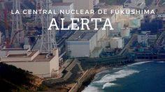 El peligro durmiente de las plantas nucleares l Japón en alerta por alto...