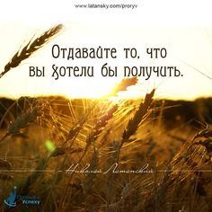 14572170_1254257717959583_7470087153237095715_n.jpg (960×960)