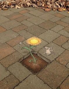 Chalk street art by David Zinn