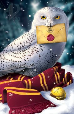 Hedwig by Atropicus on DeviantArt Harry Potter Animé, Hery Potter, Images Harry Potter, Harry Potter Poster, Harry Potter Tumblr, Harry Potter Characters, Harry Potter Painting, Harry Potter Artwork, Harry Potter Drawings