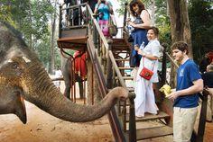Destination Travel Guide: #Cambodia #travel