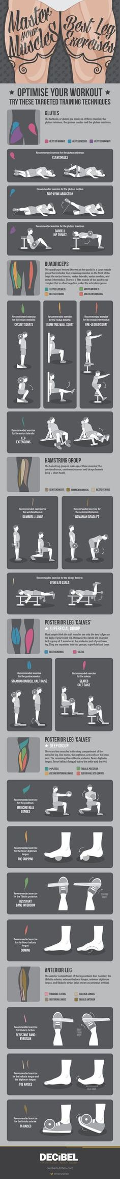 How to work out every single muscle in your legs: | 19 Cheat Sheets To Help You Work Out Like A Pro