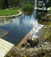 Enjoying Your Garden This Summer Natural Swimming Pools Ideas