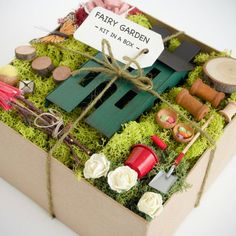 Fairy Garden Kit  Fairy Garden Accessories  Fairy by Fairyfolk