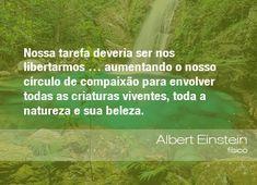 """""""Nossa tarefa deveria ser nos libertarmos... aumentando o nosso círculo de compaixão para envolver todas as criaturas viventes, toda a natureza e sua beleza"""". - Albert Einstein"""