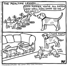 Dogs have a funny way of being adorable, confusing, and frustrating at the same time, but these cartoons by Rupert Fawcett will help you shake it all off your tail. Dog Quotes Funny, Funny Dogs, Hilarious Sayings, Funny Animal Pictures, Funny Animals, Mom Pictures, I Love Dogs, Cute Dogs, Wrinkly Dog