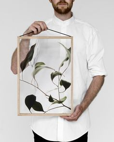 'Floating Leaves' botanical prints by MOEBE, Paper Collective, and Norm Architects