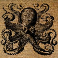 Octopus Tentacles Ocean Sea Creature Large Eyes by Graphique, $1.00 Centerpiece