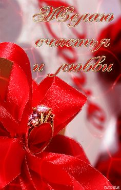 GIF Wedding Rings, Invitations, Engagement Rings, Jewelry, Gifs, Boyfriend, Google, Shoes, Places