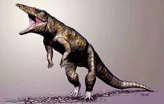 """Carnufex carolinensis es un cocodrilomorfo del triásico superior de Carolina del Norte (formación Pekin) recientemente descubierto. Esta bestia de tres metros de largo quizá anduviera sobre sus patas traseras. El triásico superior vio la radiación adaptativa de dos tipos de reptiles: los cocodrilomorfos y los dinosaurios saurisquios terópodos. Ambos grupos han """"sobrevivido"""" hasta hoy, en forma de cocodrilos, gaviales y aligátores... y pájaros."""