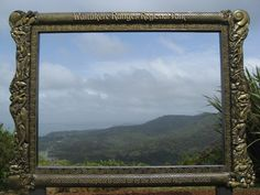 Waitakere Ranges - Auckland -