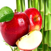 RED APPLES & BAMBOO Candle Soap Making Fragrance Oil