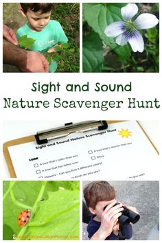Sight & Sound Nature Scavenger Hunt