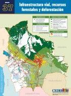 MAPA: Infraestructura vial, recursos forestales y deforestación
