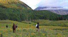 Valuing One-of-a-Kind Legacy Ranches -LandThink.com @mirrranchgroup