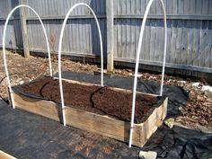 EASY PVC Hoop Greenhouse for Raised Garden Beds... for under $25 #DIY #garden #greenhouse
