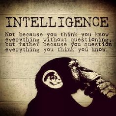 Question everything... and keep an open mind