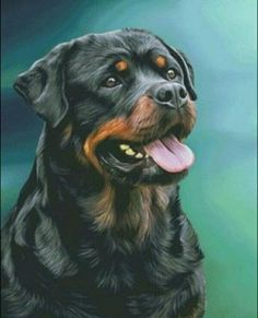 You want to know everything about the world of dogs, especially dogs Rottweilers and Pitbulls nutrition the health Exercises Rottweilers, Pitbulls, Cane Corso Mastiff, Dog Anatomy, Search And Rescue Dogs, Pet Dogs, Pets, Rottweiler Dog, Livestock