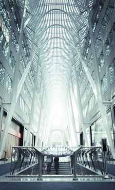 Brookfield Place / Santiago Calatrava.  I chose this post for the wide slow ascending stairs and impressive surrounding railing.
