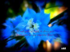 El mal gusto es capaz de abrirse paso hasta entre las más exquisitas flores.