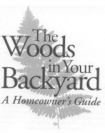 Woods in Your Backyard: Publications: Maine Forest Service: Maine ACF