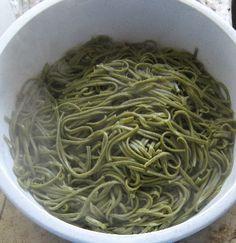 Veganise this! nettle pasta