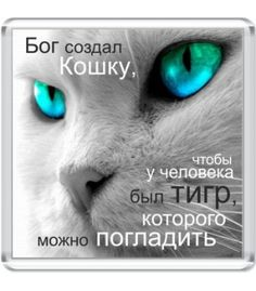 Магнит Бог создал кошку...
