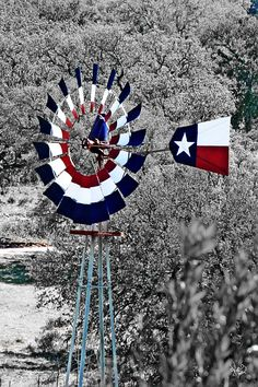 texas flag painting - Google Search