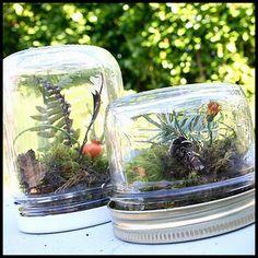 Succulent terrarium mason jar new ideas Terrariums Diy, Mason Jar Terrarium, Pot Mason, Garden Terrarium, Mason Jar Crafts, Mason Jars, Succulent Planter Diy, Succulent Centerpieces, Succulent Wedding Favors