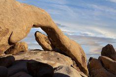 View of Arch Rock, Joshua Tree National Park, California, USA Photographic Print