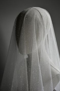 Wedding Veils With Hair Down, Wedding Gowns, Bridal Veils, Bridal Hair, Wedding Dress With Veil, Wedding Garters, Perfect Wedding, Dream Wedding, Wedding Day