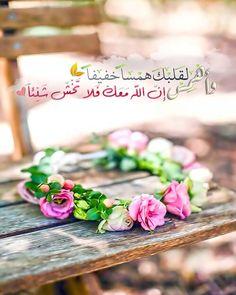DesertRose,;,Yaa Allah,;,