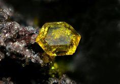 Sturmanite. N'Chwaning III Mine, N'Chwaning Mines, Kuruman, Kalahari manganese field, Northern Cape Province, South Africa FOV=2 mm Photo © Pierre Rondelez