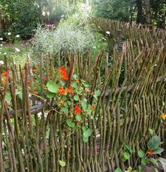 7 idées de clôtures originales à réaliser soi-même                                                                                                                                                                                 Plus