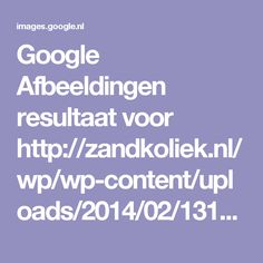 Google Afbeeldingen resultaat voor http://zandkoliek.nl/wp/wp-content/uploads/2014/02/1313402677-spijsvertering-met-tekst-voervergelijk-nl.jpg