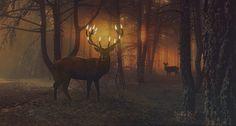 In The Forest by Beholdentolove.deviantart.com on @DeviantArt