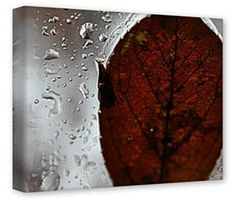 Gallery Wrapped 11x14x1.5  Canvas Art - Rain Drops On My Window
