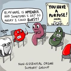 Non-essential organ support group. My appendix was really angry, so I had it removed.