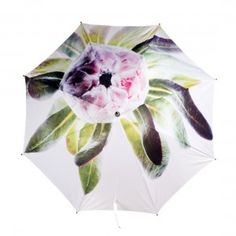 Nature Conscious Protea Umbrella