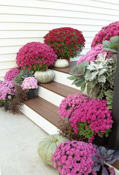 Fall porch with shades of purple mums and pale pumpkins Fall Home Decor, Autumn Home, Purple Mums, Seasonal Decor, Holiday Decor, Autumn Decorations, House Decorations, Halls, Pink Pumpkins