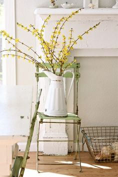 First trip to the cottage in the spring - cut some forsythia to brighten the kitchen . . .