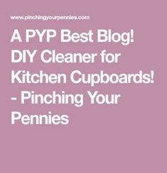 31 Ideas for diy kitchen cleaner pennies Diy Clothes Storage, Diy Storage Shed, How To Clean Pennies, Diy Storage Cabinets, Diy Wood Bench, Baby Room Diy, Homemade Christmas Gifts, Diy Cleaners, Diy Wood Projects