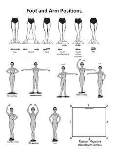 Ballet arm and feet positions