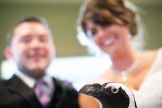 Wedding photography meganheinphotography.com