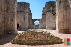 ASSOCIAZIONE CULTURALE LOCUS ISTE | Conservatori dei Beni Culturali - Operatori Culturali Storyteller - Guide Turistiche Reg. Campania | LinkedIn