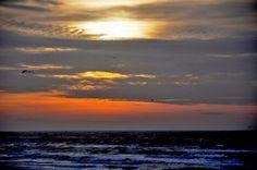 Zandvoort 26-12-2015