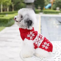 Check out this product on Alibaba App Factory Wholesale Knitting Pattern Christmas Dog Sweater Pet Winter Clothes Winter Clothes, Winter Outfits, Free Knitting, Knitting Patterns, Dog Jumpers, Christmas Dog, Snowman, Free Pattern, App