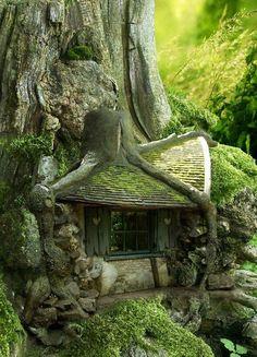 .tree fairy house