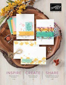 Stampin' Up! Demonstrator Pootles - Who wants a free copy of the New 2020 Annual Stampin' Up! Fun Fold Cards, Folded Cards, Easy Cards, Cards Diy, Gift Cards, Stampin Up, One Sheet Wonder, Envelope Punch Board, Treat Holder