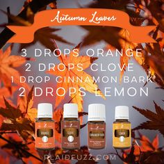 Bring the season inside with these fall essential oil diffuser recipes. From crispy mornings to apple pie these recipes will make your house smell amazing! Fall Essential Oils, Essential Oil Diffuser Blends, Essential Oil Uses, Young Living Essential Oils, Yl Oils, Diffuser Recipes, Perfume, Apple Pie, Lemon Oil